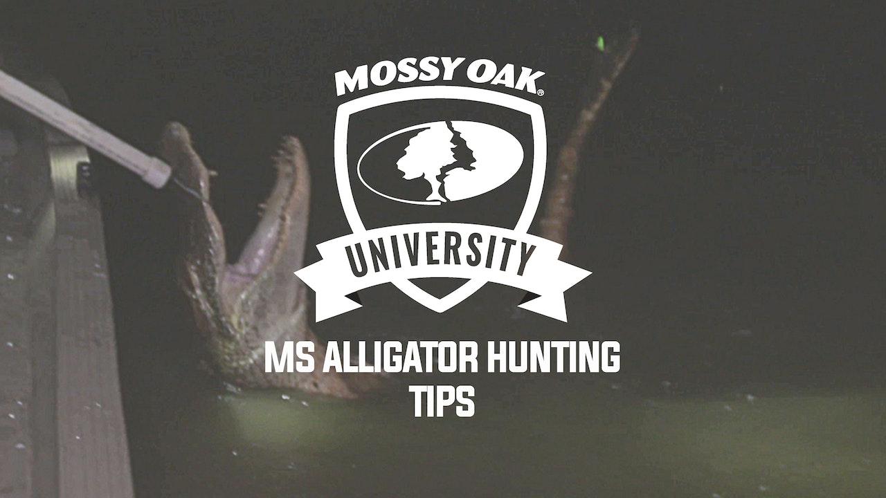 Alligator Hunting Tips