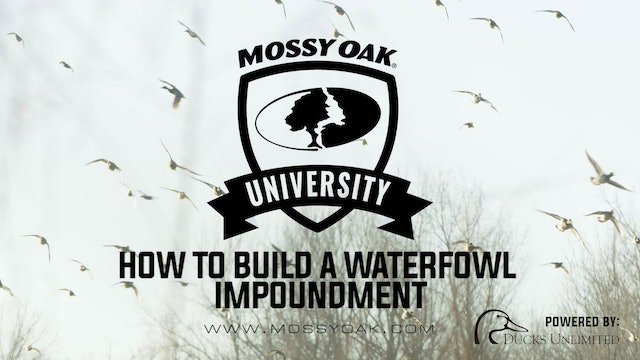 How to Build a Waterfowl Impoundment