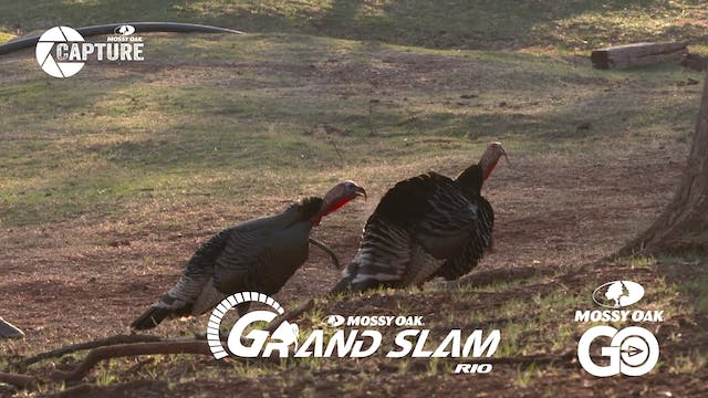 Grand Slam • Episode 7 • Rios