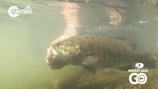 Walt & Scott • Smallmouth Bass Fishing