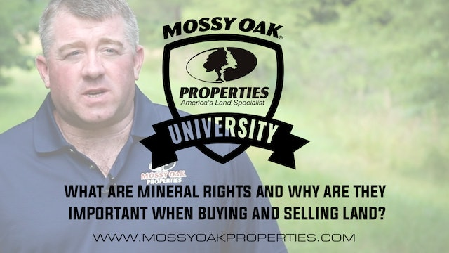 What Are Mineral Rights And Why Are They Important?