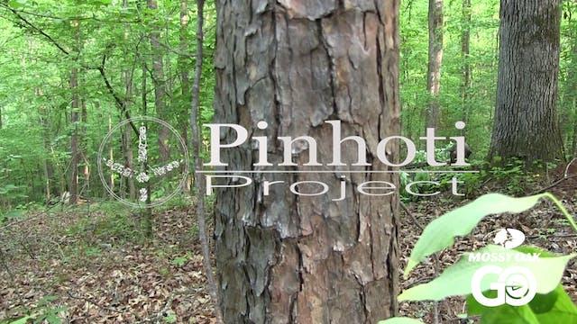 Last Day Limbhanger • Pinhoti Project...
