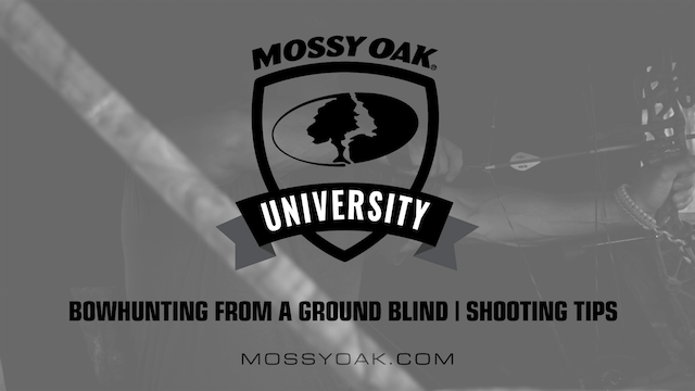 Bowhunting from Ground Blinds • 1 Shooting Tips
