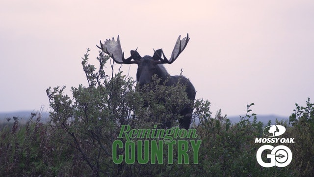 Pursuit of the Last Frontier I • Remington Country