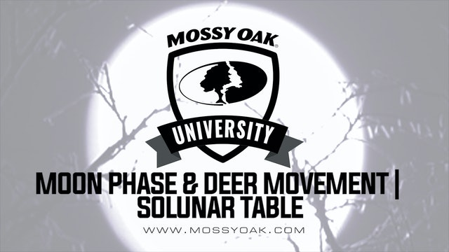 Moon Phase and Deer Movement - Solunar Tables