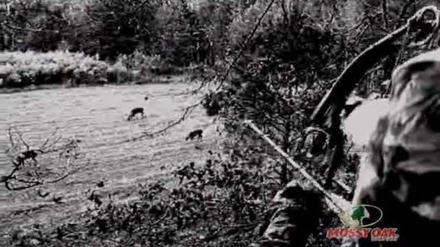 Mississippi River Blues • Bowhunting ...