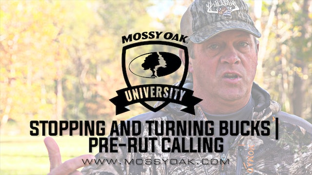 How To Use A Grunt Call | Aggressive Buck Grunt Sequence