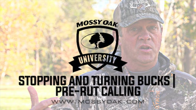 How To Use A Grunt Call | Aggressive ...