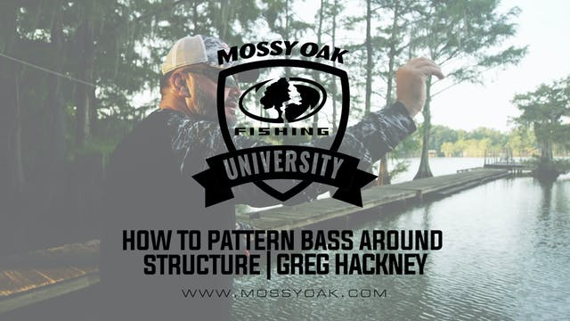 How to Pattern Bass Around Structure ...