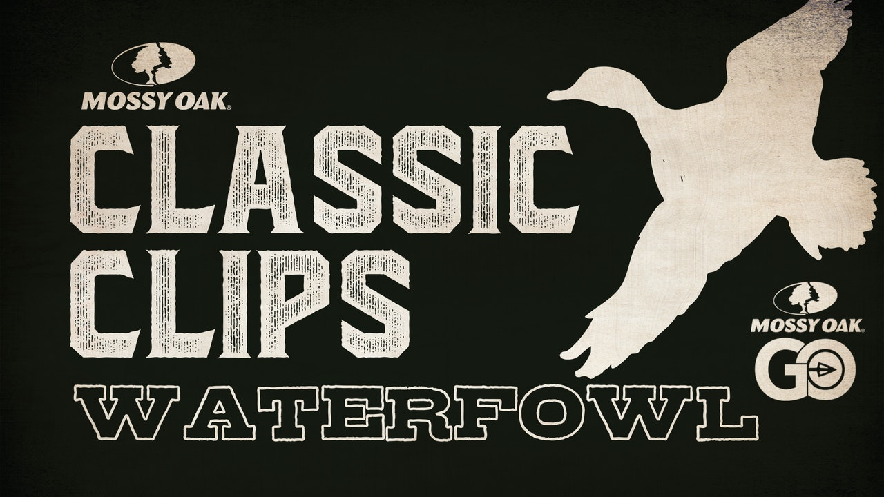 Classic Clips Waterfowl