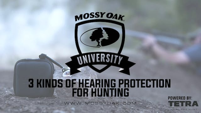 3 Kinds of Hearing Protection for Sho...
