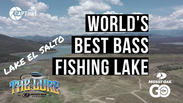 Lake El Salto • The Lure