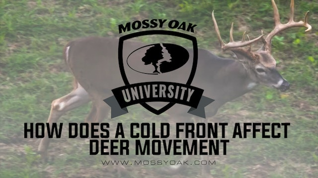 How Does a Weather Front or Cold Front Affect Deer Movement