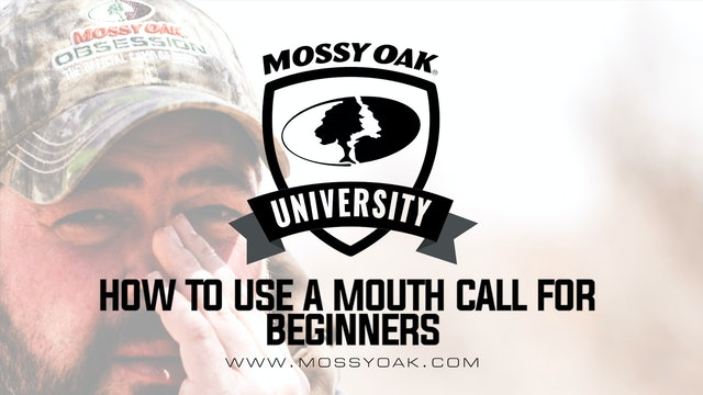 How to Use a Mouth Turkey Call for Beginners