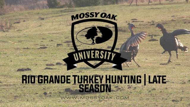 Rio Grande Turkey Hunting | Late Season