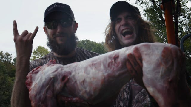 Oklahoma Hogs • The Hunger