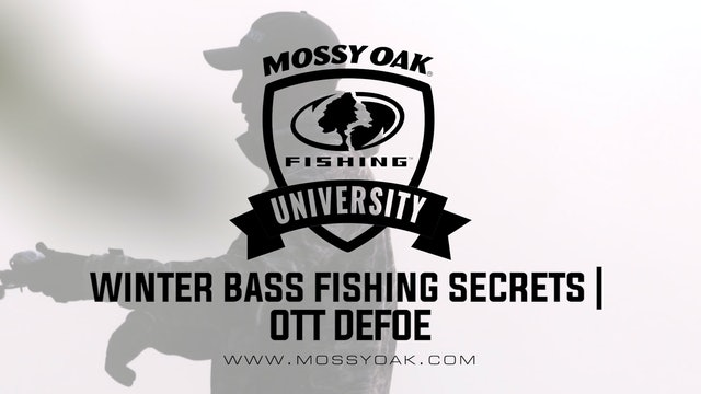 Winter Bass Fishing Secrets - Ott DeFoe Fishing Tips