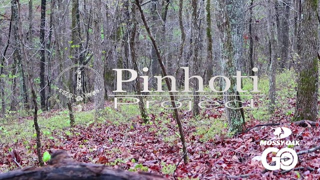 Solo Hunting • Pinhoti Project Day 32