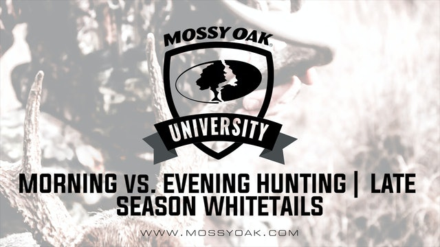 Morning vs. Evening Hunting • Late Season Whitetails