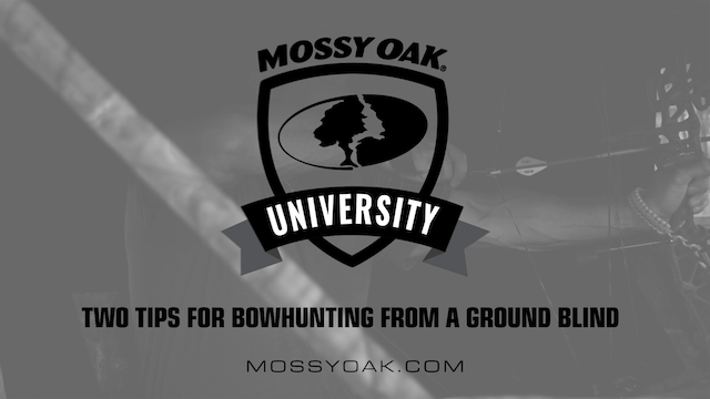 Bowhunting from Ground Blinds • 2 Two Tips
