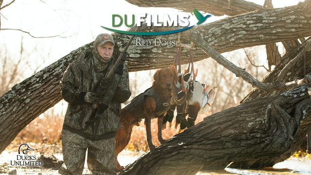 Red Dogs • DU Films