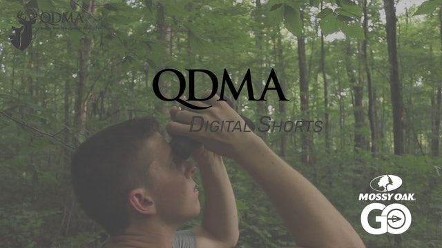 Hard Mast Survey • QDMA Shorts