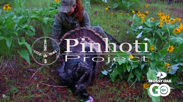 Incredible Roost Hunt For A Merriam T...