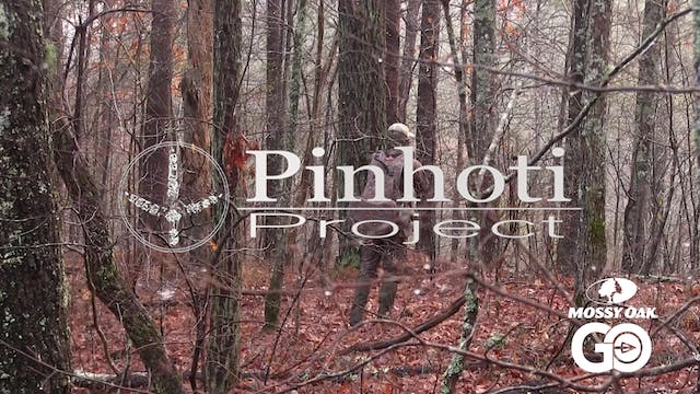 Alabama Opener 2018 • Close Call • Pi...