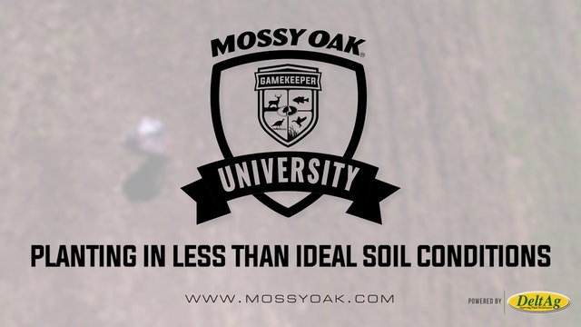 Planting in Less Than Ideal Soil Conditions • Mossy Oak University
