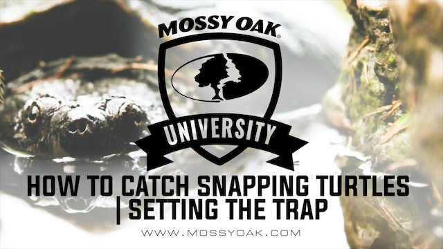 How To Catch Snapping Turtles | Setting The Trap