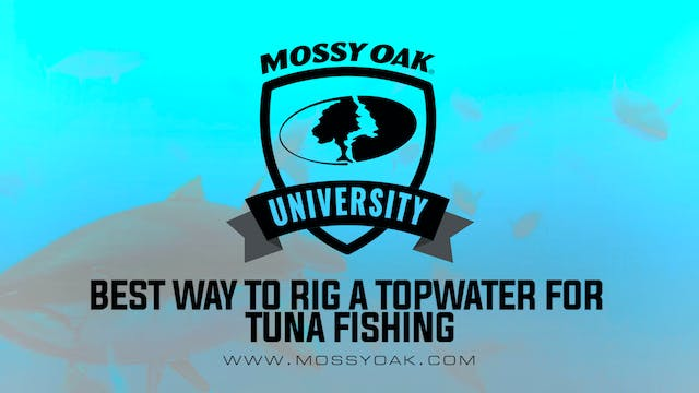 Best Way to Rig a Topwater for Tuna F...