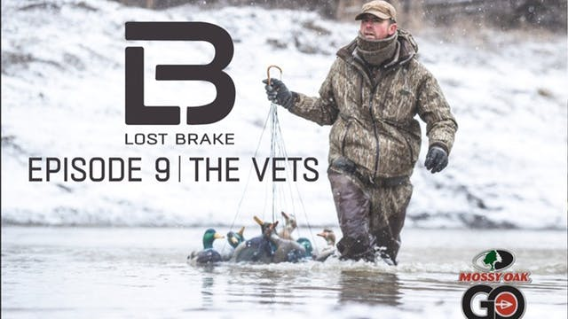 Lost Brake • The Vets • Episode 9