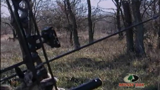 Grounded in Texas • Bowhunting Bucks at Eye Level
