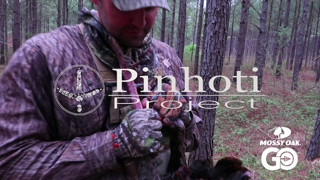 An Old Public Land Alabama Gobbler • Pinhoti Project Day 18