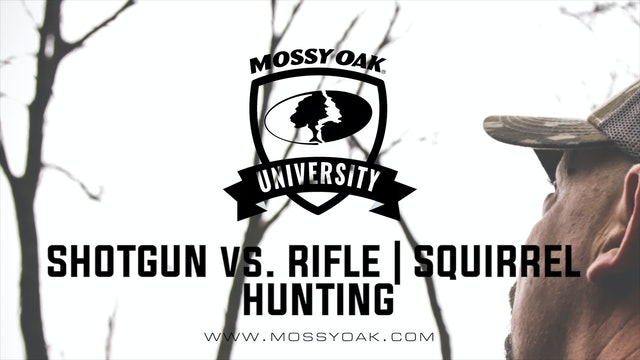 Shotgun Vs. Rifle | Squirrel Hunting