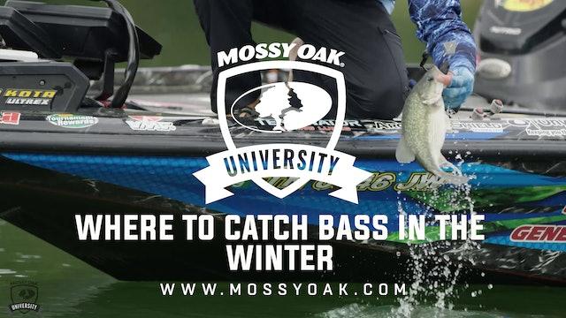 Where to Catch Bass in the Winter - Ott DeFoe Fishing Tips