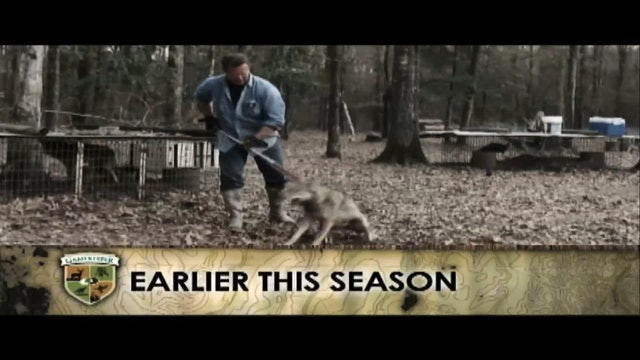 Catch Dog Chronicles • Part 3 • Coyote Trapping