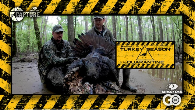 Public Swamp Bird • Turkey Season Quarantine
