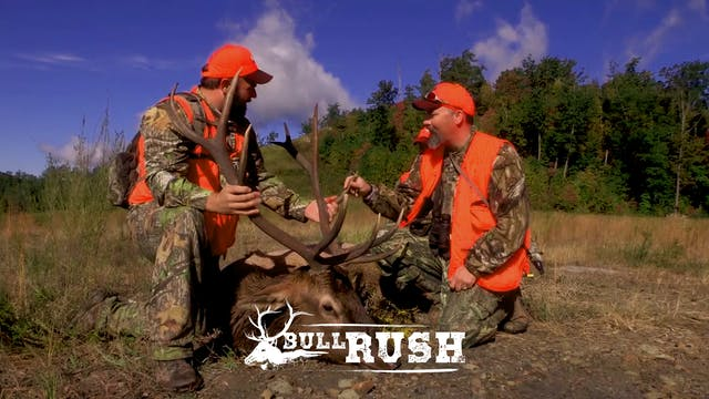BULL RUSH • Episode 4
