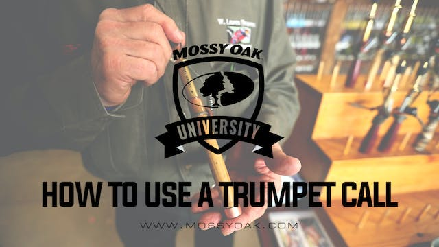 How To Use A Trumpet Call