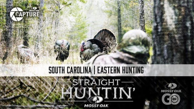 South Carolina • Straight Huntin'