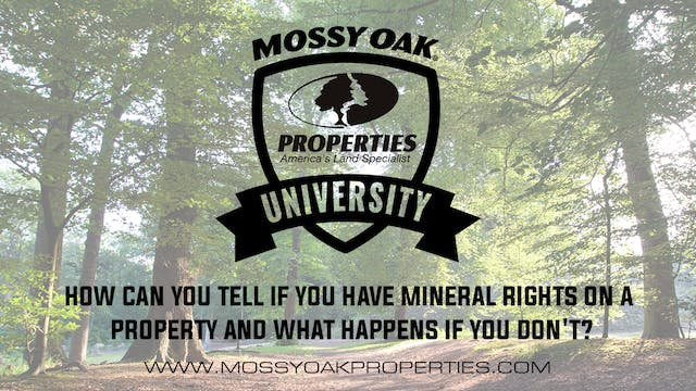 How Can You Tell If You Have Mineral ...