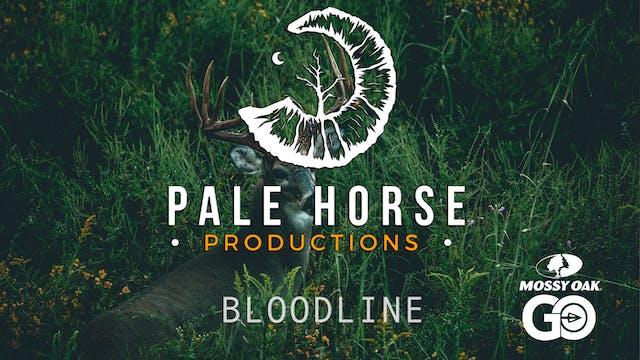 Bloodline • Pale Horse