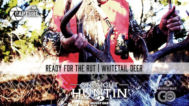 Ready for the Rut • Whitetail Deer • Straight Huntin