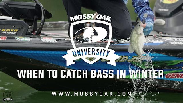 When to Catch Bass in the Winter - Ott DeFoe Fishing Tips