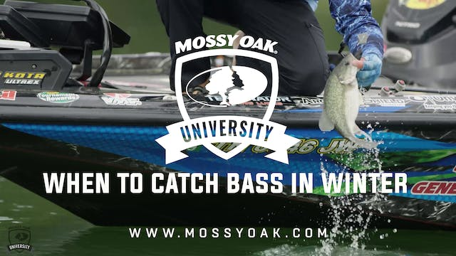 When to Catch Bass in the Winter - Ot...