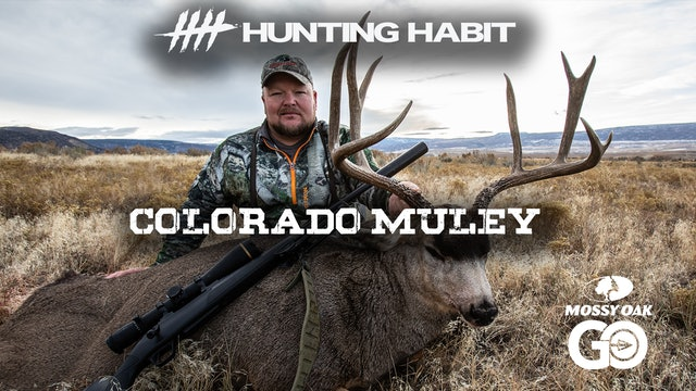 Hunting Habit · Colorado Muley