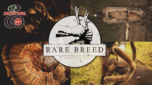 The Island • Rare Breed