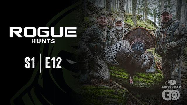 Rogue Hunts • S1 Ep12 • PA