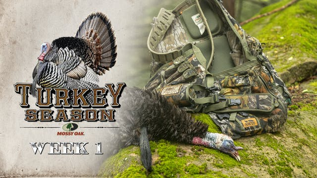 Live: 3.15.2021 Turkey Season Replay